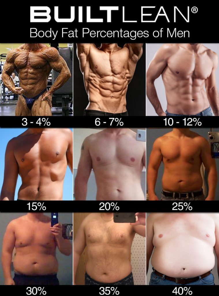 body fat percentages men chart